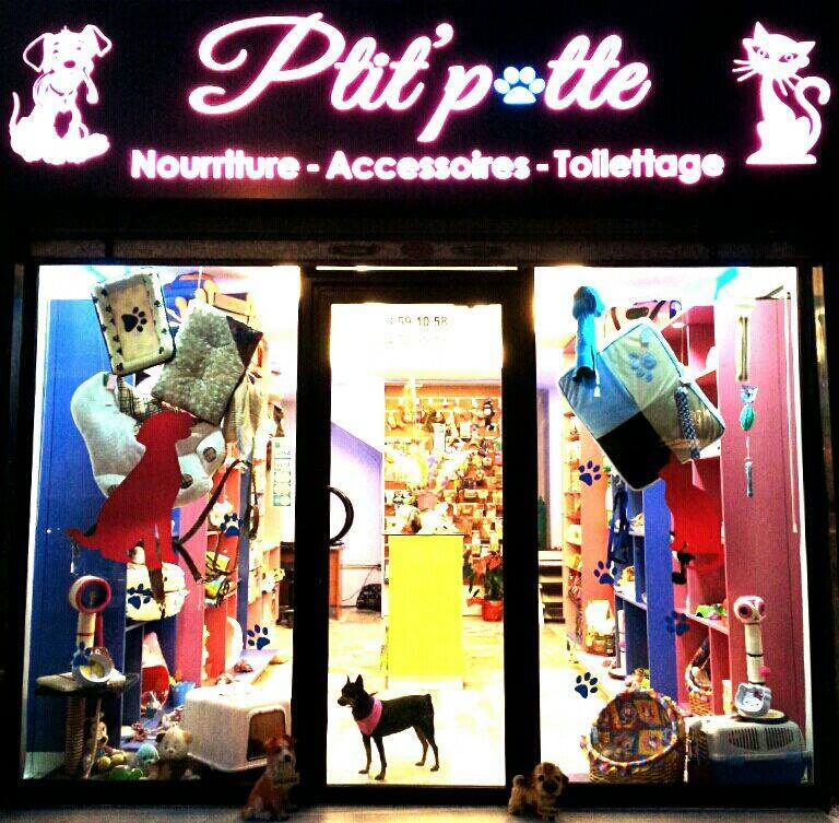 Pet Sitter in Lebanon: Ptit