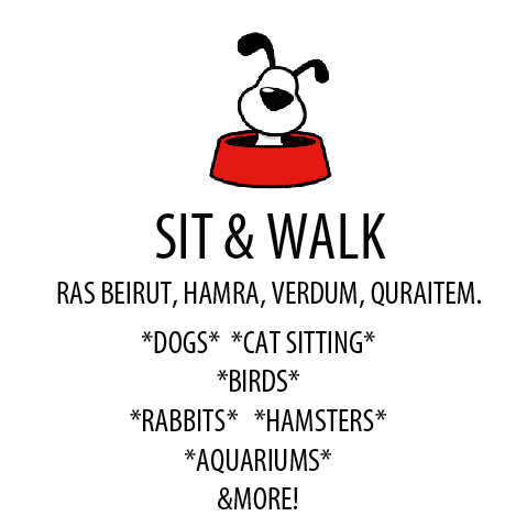 Pet Sitter in Lebanon: Pets Sit & Walk