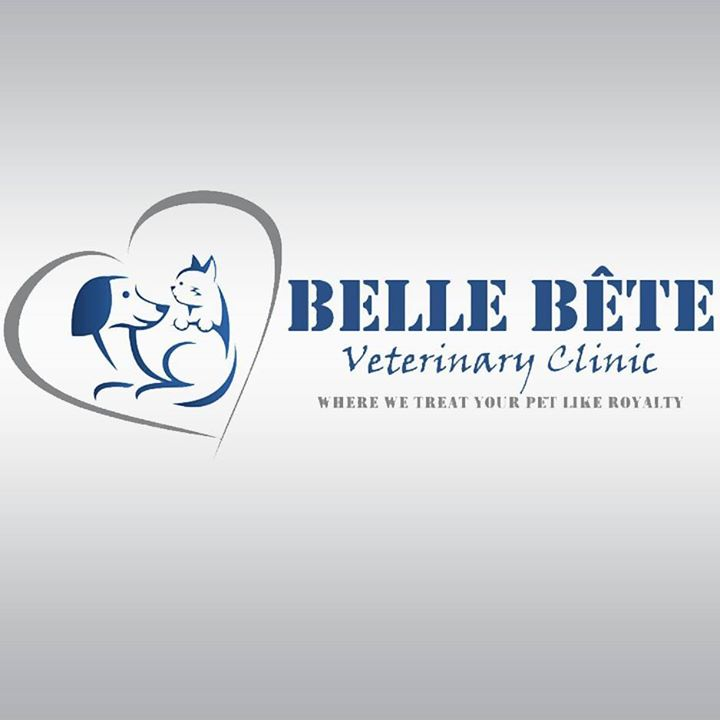 Veterinarian in Lebanon: Belle Bete Veterinary Clinic