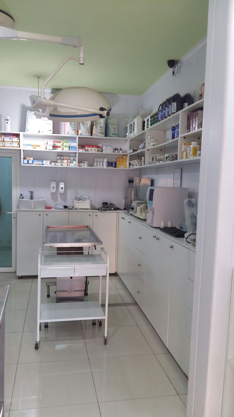 Veterinarian in Lebanon: JADOV PETS CENTER